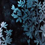 Lalique4